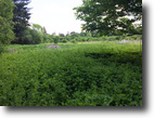New York Land 11 Acres 11+ Village Ac. near Alfred State College