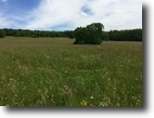 163 Acres Tillable Farmland and Pasture