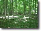 45 acres in Ithaca NY with Owner Financing