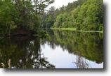 Florida Waterfront 14 Acres Withlacoochee Peninsula