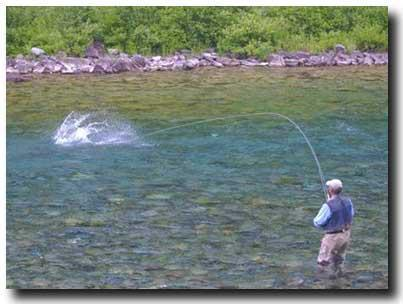 imagine your salmon catch in front of your land quebec