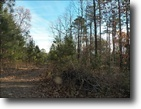 Georgia Hunting Land 277 Acres Large Recreational Tract near Ranger, GA