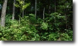 Tennessee Hunting Land 1 Acres 0.90 Ac on Mayfield Brown Rd, Celina, TN