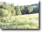 22.5 Acres w/2 Creeks ~ Abundant Wildlife
