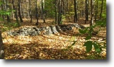 118 acres Timberland near Cooperstown NY