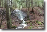 176 acres Timberland in Croghan NY