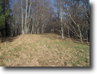 30+ Wooded Acres  Secluded & Private