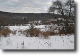 80 acres Farmland with Owner Financing