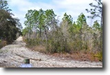 Florida Land 164 Acres Annutteliga Hammock Tract 1