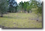 Florida Land 21 Acres Deep Creek 21