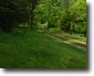 79 Acres Wooded in Clay Co.