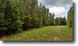 89 Acres for Sale in Choctaw County, MS