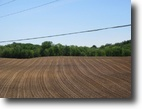 51 acres Tillable Farmland Annsville NY
