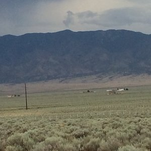 View of property facing east to mountains and South Fence line.