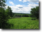 23 Acres Near Corning Borders State Forest