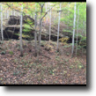 Att Hunters- Excellent Hunting 75+/-acre