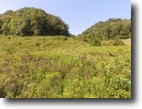 Tennessee Farm Land 16 Acres 15.76 ac South Fork Road, Whitleyville
