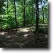 Tennessee Hunting Land 24 Acres 23.77 ac. recreational, private, secluded