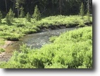 20 or 40 acre Colorado MiningClaim w/Creek