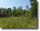 Tennessee Hunting Land 3 Acres 3 ac private & secluded, no restriction