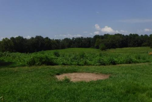 land joins corp mostly pasture fenced property monroe tennessee