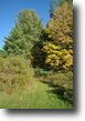 50 acres Berkshire NY near State Forest
