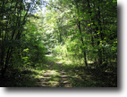 87 acres Hunting Land Southern Tier NY