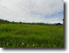 Ontario Hunting Land 33 Acres File 30- Lookin for a Hobby Farm property