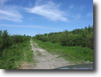 File 105 - 69.5 Acres In Northern Ontario