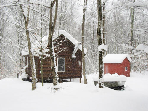 house & land cabin camden ny borders forest property