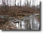 Tennessee Farm Land 86 Acres 85.99ac w/creeks, stocked pond, cabin