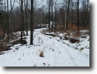 216 acres Hunting Land in Olean NY