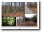 Tennessee Farm Land 64 Acres 63.81ac w/2000ft Corp of Eng on Center Hil