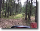 Wisconsin Waterfront 1 Acres Totagatic River - Minong, Wi