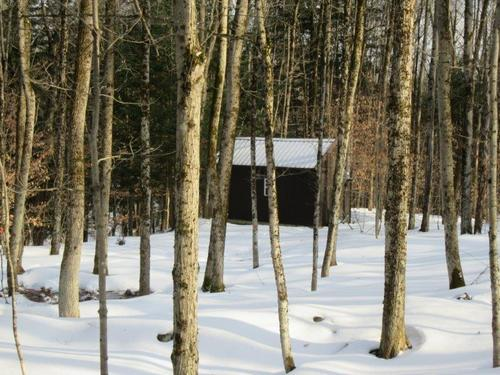 hunting camp florence ny borders forest property