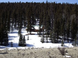 View of cabin from north property line
