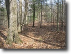 28 acres Hunting in Catlin NY near Forest