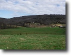 Tennessee Farm Land 49 Acres 49ac All Open Level–Rolling Pasture,4 Pond