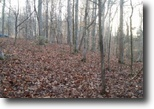 Alabama Land 1 Acres Beautiful lot overlooking West Obey River