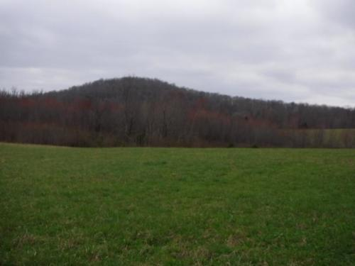 land barn spring mtn views property allons tennessee