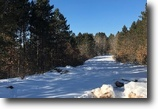 Wisconsin Land 20 Acres Gordon, WI