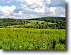 64 acres Farmland Cuba NY Beebe Hill Road