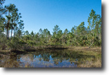 Florida Hunting Land 386 Acres Honey Hole Ranch in Mims, Florida