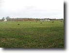 6 Acres Residential Farm Ranch Land in OH