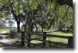 Florida Farm Land 60 Acres Knights Farm & Ranch in Plant City, Florid