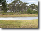Florida Land 10 Acres Canoe Creek Rd Residential Development