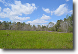 Alabama Farm Land 500 Acres Cypress Bottom Hunting Cabin
