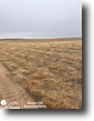 Missouri Farm Land 320 Acres Farm for Sale in Finney County, KS