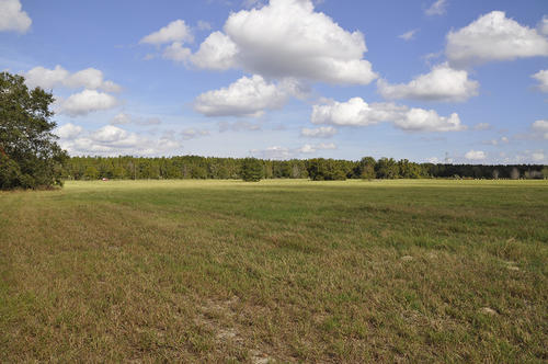leesburg residential land property florida