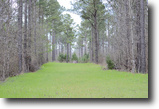 Georgia Hunting Land 340 Acres Pine Ridge Timber & Recreational Tract